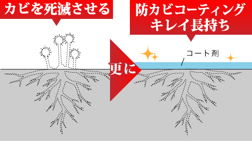 ZERO1工法はカビを元から除去を解説図