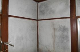 カビ除去・防カビ施工事例 室内Before2